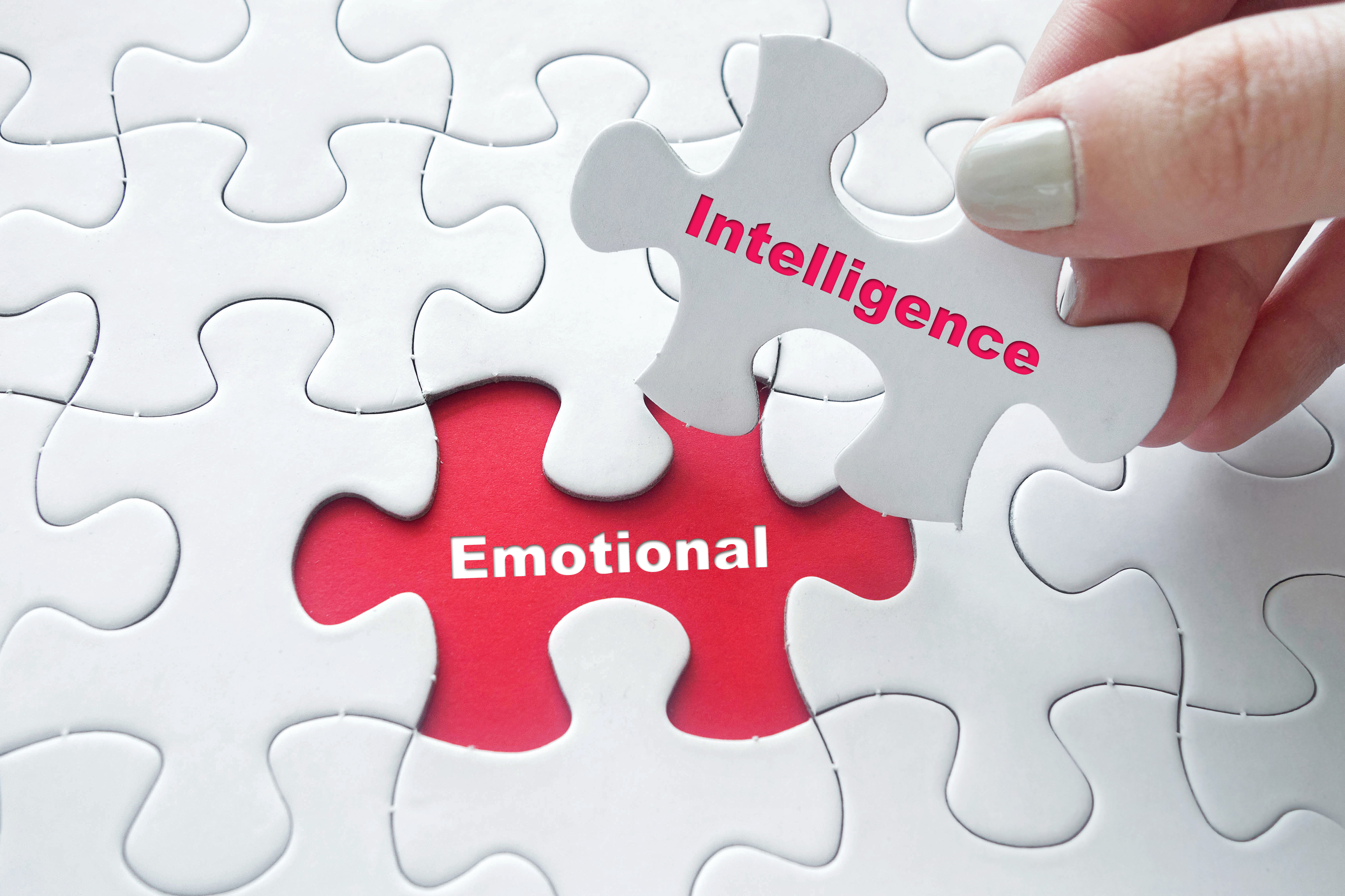 Emotional Intelligence – the Centerpiece of Great Organizations